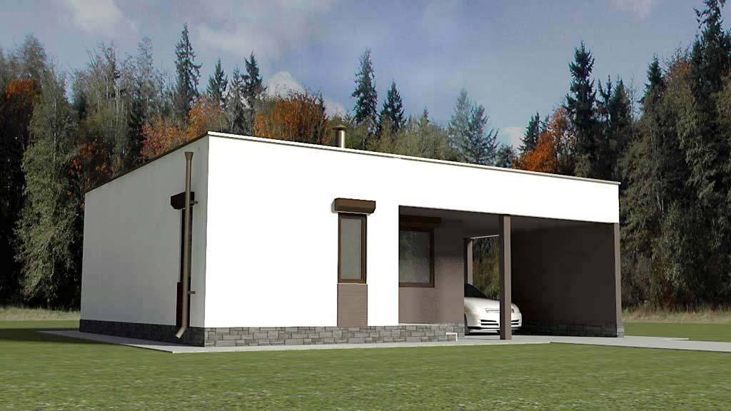 Одноэтажный дом с плоской кровлей