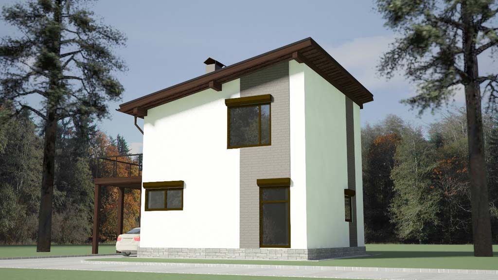 Дом с односкатной кровлей